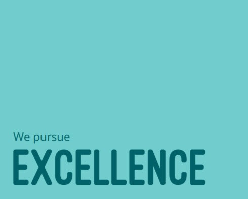 Values - We pursue Excellence