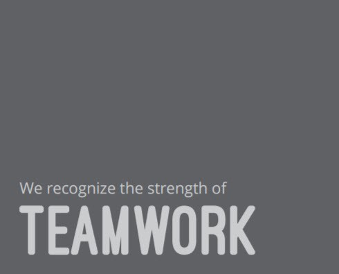Values - We recognize the strength of Teamwork